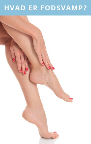 Generelt om fodsvamp