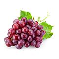 Vindruekerne