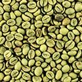 Grønne bønner ekstrakt