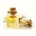 Citrongræs olie