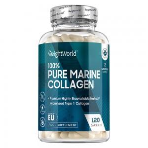 Rent Marine Collagen