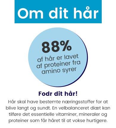 shydk-trx2-page-infograph